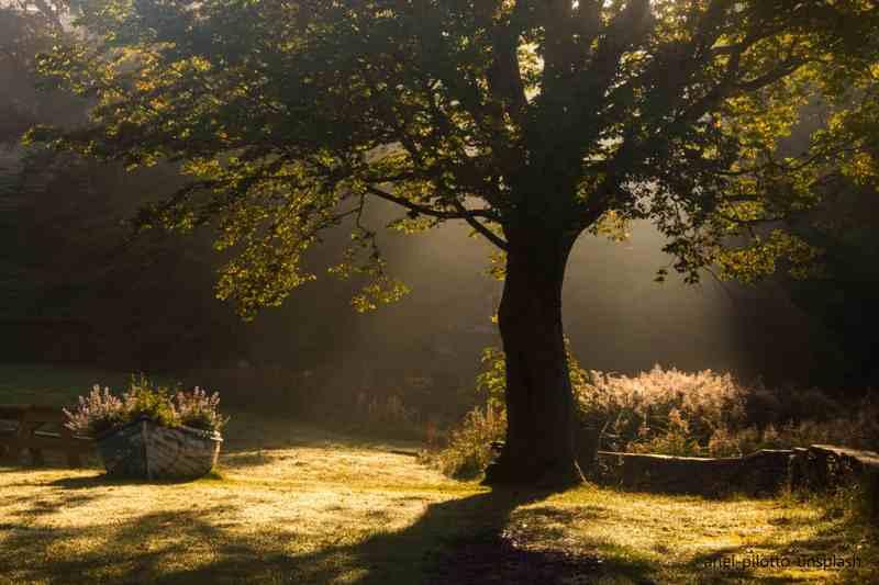 Draußen-Zeit: Balsam für die Seele